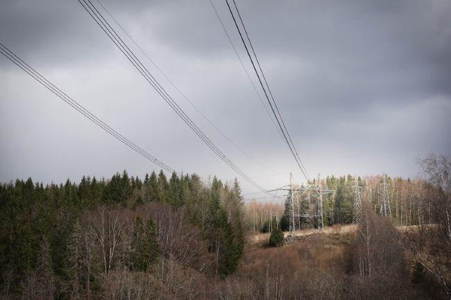 Strømmast i skog.foto